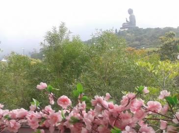 Big Buddha at Lantau Island