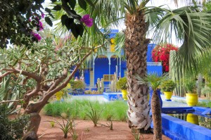 Trees frame the bright blue and yellow house and planters in le jardin des majorelle